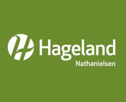 Nathanielsen Blomster AS logo
